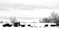 Baker Valley, Spring Snowfall