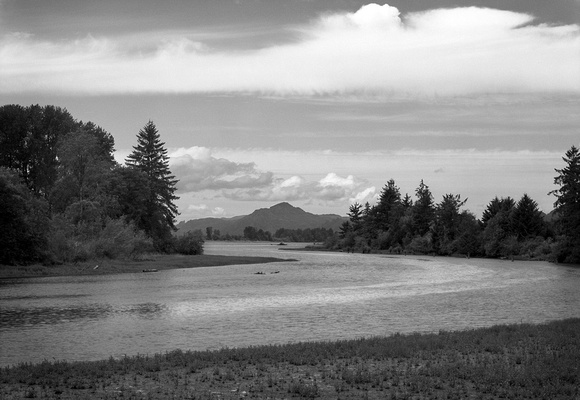 Steamboat Slough, Along the Lower Columbia River
