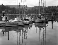 Moorage, Along the Lower Yaquina