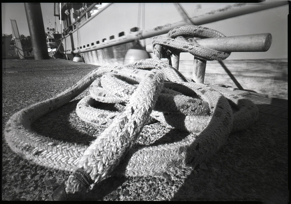Mooring Rope, Newport, Oregon